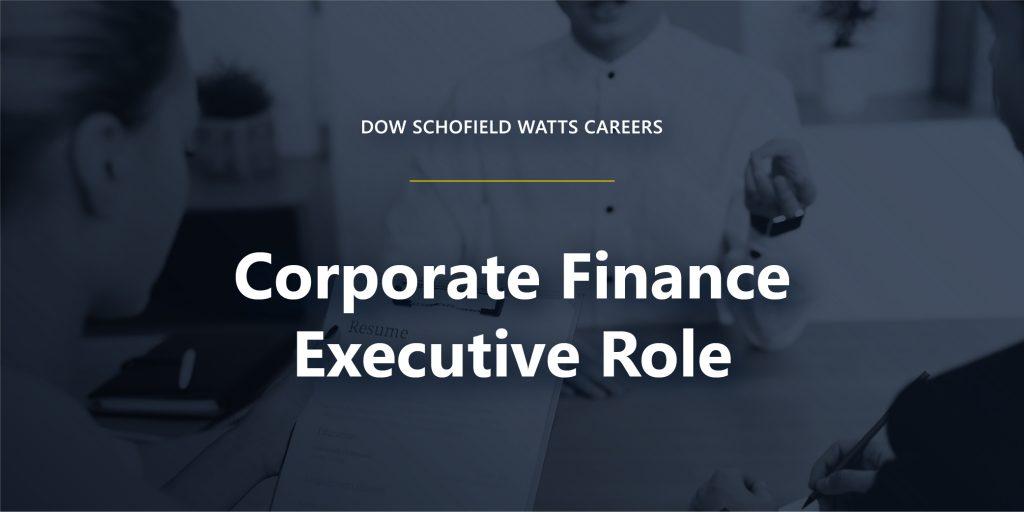 Corporate Finance Executive Role